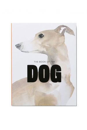 Bok The book of the dog in art